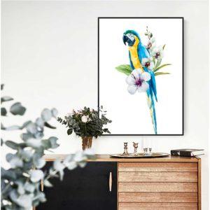Tranh động vật chim vẹt đầy màu sắc IMT-T1016